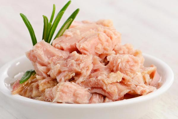 tuna for pregnancy
