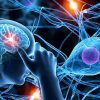 Is Fibromyalgia considered a neurological disorder